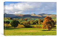 Brecon Beacons with an Oak Tree in Autumn Colour., Canvas Print