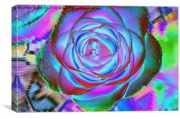 The Petals the Fairies Painted, Canvas Print