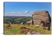 Bell Tor to Widecombe Valley, Canvas Print