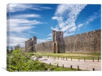 Aigues-Mortes Fortifications , Canvas Print