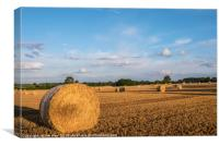 Hay Bales in Mid Summer, Canvas Print