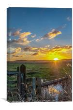Cley Marshes  Norfolk, Canvas Print