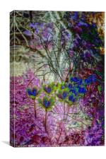 Colours of Spring, Canvas Print