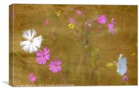 Wildflowers in Abstract, Canvas Print