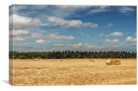 Hay Bales in Rural Norfolk, Canvas Print
