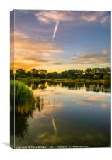 Early hours at Holmethorpe Lagoons Nature Reserve, Canvas Print