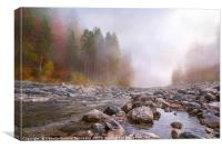 Autumn mist over river and forest, Canvas Print