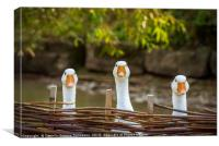 Three funny white geese, Canvas Print