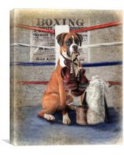 The Boxer, Canvas Print