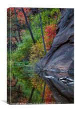 Oak Creek Canyon, Canvas Print