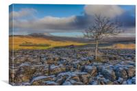 Southerscales in the Yorkshire Dales, Canvas Print