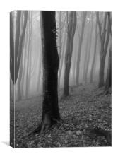 Silhouettes in the Mist, Mono, Canvas Print