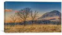 Dumgoyne from Strathblane, Canvas Print