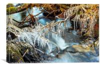 Icicles, Selside Beck, Canvas Print