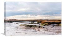 Down on the Marsh in winter, Canvas Print