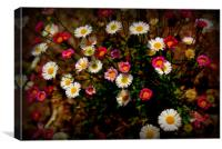 Spring Flowers, Canvas Print