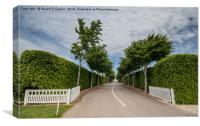 Goodwood Race Circuit, Canvas Print