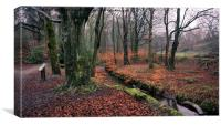 Etherow Woods, Canvas Print