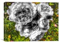 A black and white bouquet of pink rose flowers, Canvas Print