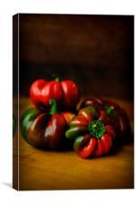 Ripening Peppers, Canvas Print