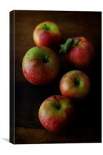 Five Red Apples, Canvas Print