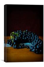 Black Grapes on Marble, Canvas Print