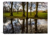 A Large Pool of Reflection, Canvas Print