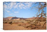 Dead tree in the namib desert, Canvas Print