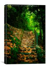 Nature Hill. Steps on golden leaves., Canvas Print