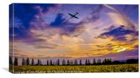 Fly in a Spitfire MJ772 , Canvas Print