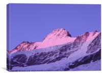 Schreckhorn North Face, Canvas Print