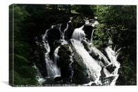 Swallow falls, Canvas Print