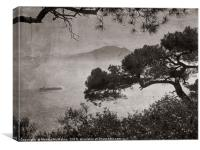 Africa in the mist, Old photo style., Canvas Print