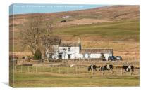 Low End Farm, Harwood, Upper Teesdale, Canvas Print