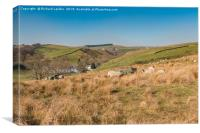 Ettersgill, Upper Teesdale, Canvas Print