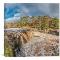 Swollen River Tees at Low Force Waterfall, Autumn, Canvas Print