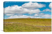 Barns at Lingy Hill, Harwood, Upper Teesdale, Canvas Print