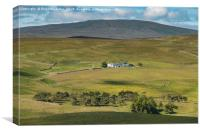 Peghorn Lodge Farm, Upper Teesdale, Canvas Print