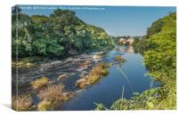 Summer on the River Tees at Barnard Castle, Canvas Print