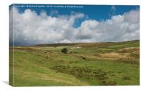 High Beck Head farm, Upper Teesdale, Canvas Print