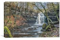 Autumn at Summerhill Force Waterfall, Teesdale, Canvas Print