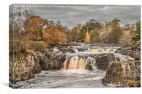 Autumn Colours at Low Force Waterfall, Teesdale, Canvas Print