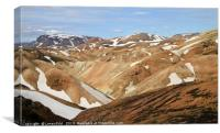 Beautiful and rugged landscape in Iceland, Canvas Print