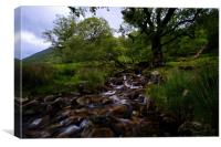 Lake District stream running into Buttermere, Canvas Print