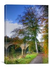 Prebends Bridge in Autumn, Canvas Print