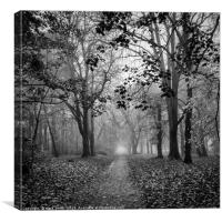 Figure In The Mist, Canvas Print