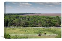 farmland and herd of horses in corral aerial view, Canvas Print