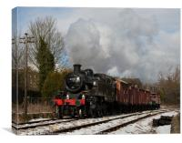 41241 on the goods, Canvas Print