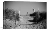 The Dunes at West Wittering, Canvas Print