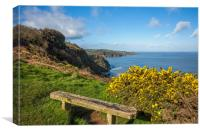 Bench on the combe Martin to Hangman hills walk, Canvas Print